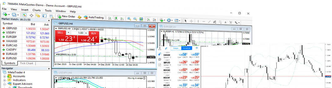 metatrader-4-first-screen.png